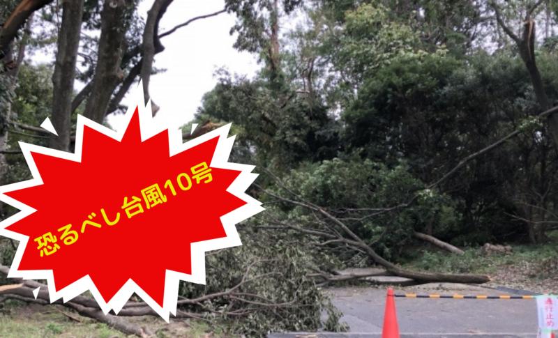 恐るべし台風10号