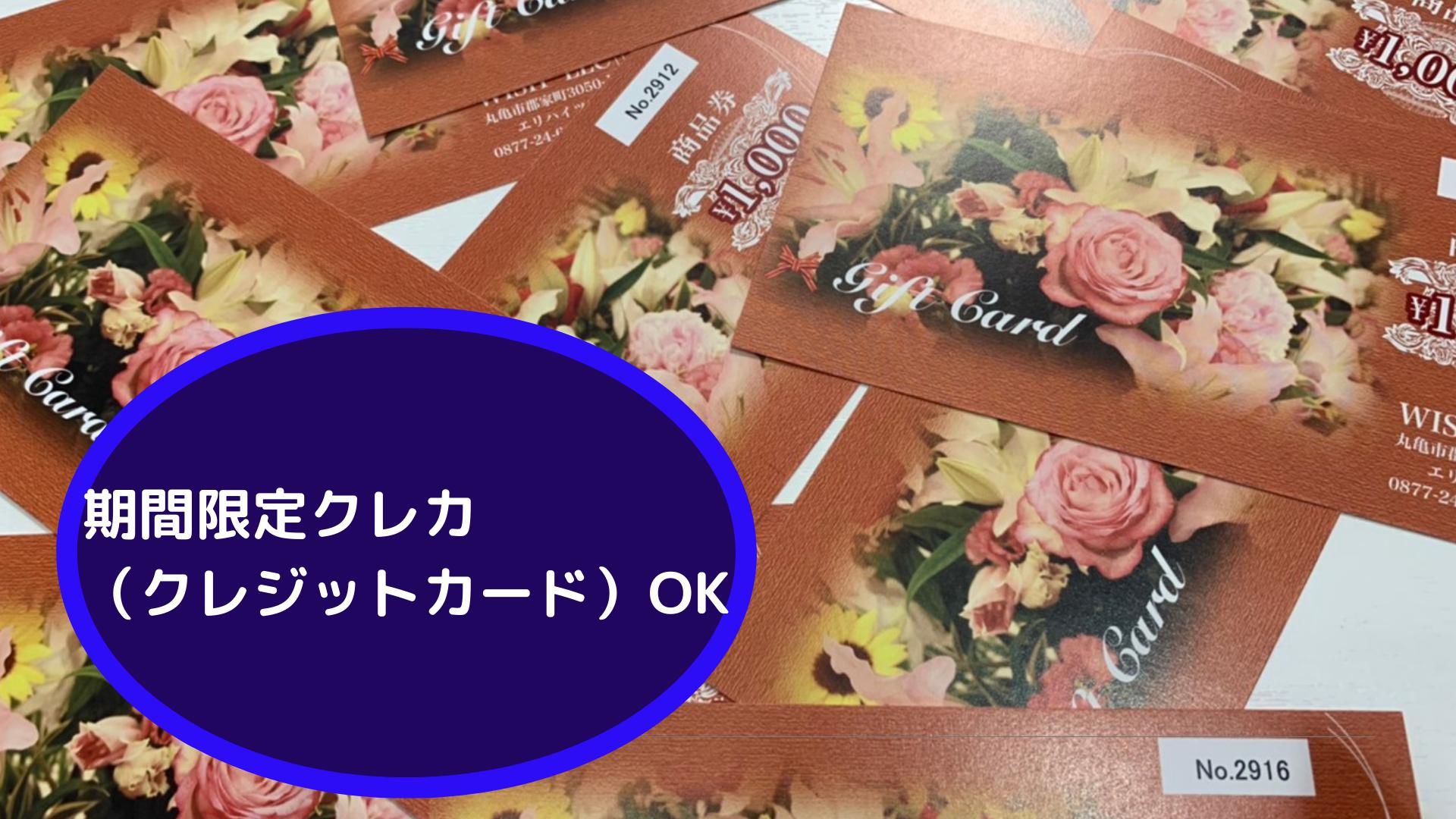 プレミアム金券 期間限定クレカ(クレジットカード)OK