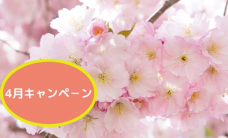 4月キャンペ-ン